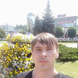Максим, 37 лет, Калининград