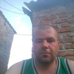 Вадим, 30 лет, Гуляйполе