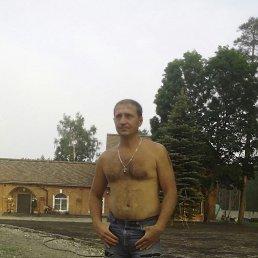 BaBaY, 38 лет, Бежецк