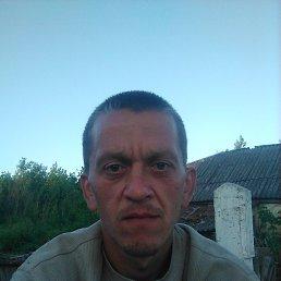 Ваня, 33 года, Курск