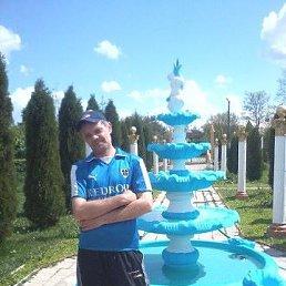Александр, 48 лет, Кировоград