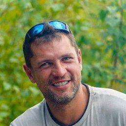 Алексей, 41 год, Новороссийск