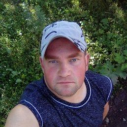 Денис, 32 года, Осташков