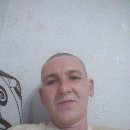 Александр, 35 лет, Нижний Новгород