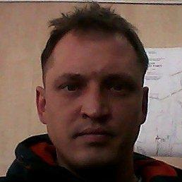 Максим, 38 лет, Кемерово