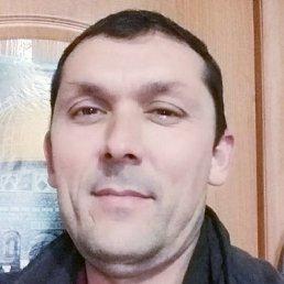 Рустам, 43 года, Пермь