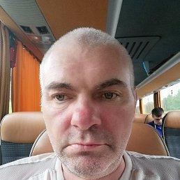 Андрей, 43 года, Орел