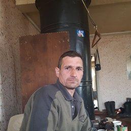 Андрей, 44 года, Окуловка
