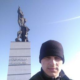 Николай, 31 год, Дальнереченск