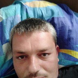 Антон, 35 лет, Днепропетровск