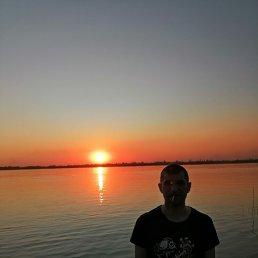 Роман, 36 лет, Тольятти