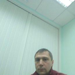 Николай, Тула, 37 лет