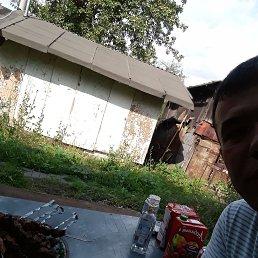 Фото Ali, Курск, 31 год - добавлено 1 августа 2020