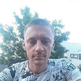 Вадим, 33 года, Николаев