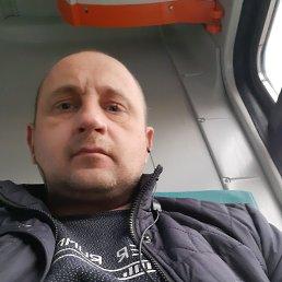 Александр, 40 лет, Курск