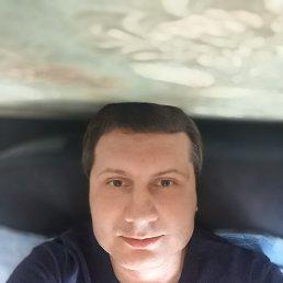 Дмитрий, Новороссийск, 38 лет