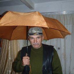 Сударев, 58 лет, Сочи
