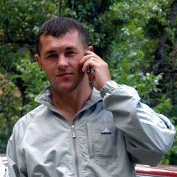 Cергей, 43 года, Енакиево