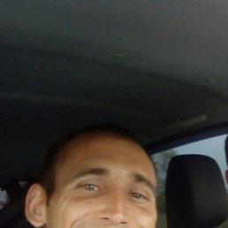 Вова, 29 лет, Саратов