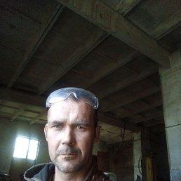 Алексей, 36 лет, Порецкое