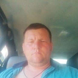 Михаил, 34 года, Ясногорск