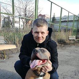 Денис, 26 лет, Тольятти