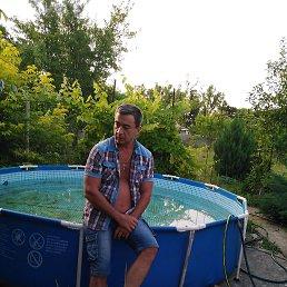 Игорь, 44 года, Белгород