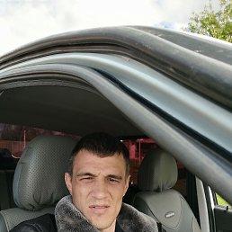 Максим, 28 лет, Волгоград