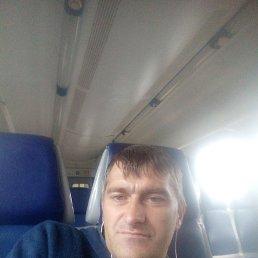 Михаил, 44 года, Балашиха