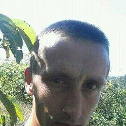Ситник, 31 год, Чоп
