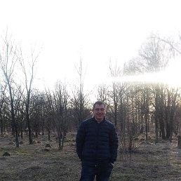 Александр, Тула, 29 лет
