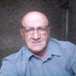 Александр, 65 лет, Курск