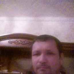 Тимур, 43 года, Мелитополь