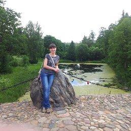 Романенко, 37 лет, Тверь
