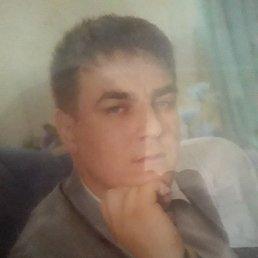 Сергей, 37 лет, Дмитров
