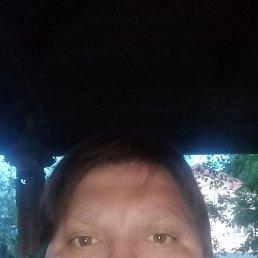 Нина, 41 год, Солнечногорск