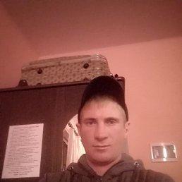 Александр, 37 лет, Сальск