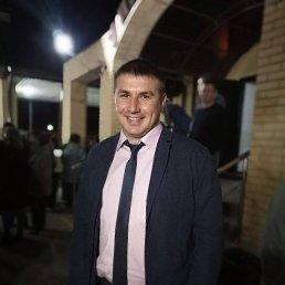 Алексей, 26 лет, Липецк