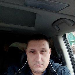 Виталий, 40 лет, Курск