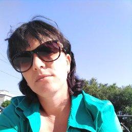 Дарья, 29 лет, Волгоград