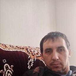 Михаил, 40 лет, Рыбное