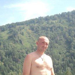 Алексей, 37 лет, ЗАТО Сибирский