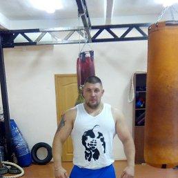 Александр, 33 года, Зарайск