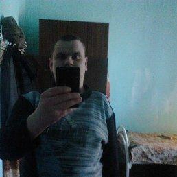Cергей, 29 лет, Шимск