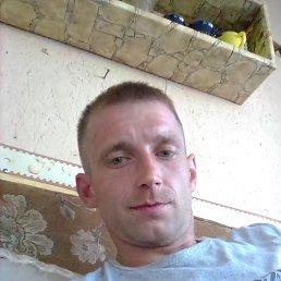 Павел, 27 лет, Кингисепп