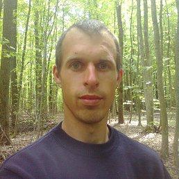 Сергей, 27 лет, Дунаевцы