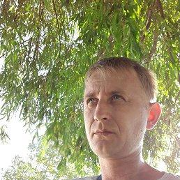 Стас, 35 лет, Славянск-на-Кубани