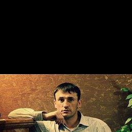 Николай, 32 года, Сокол