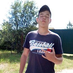 Данил, 19 лет, Чаплыгин