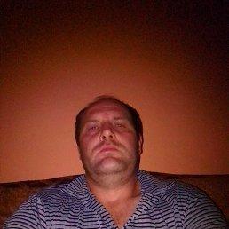 Алекс, 41 год, Волово